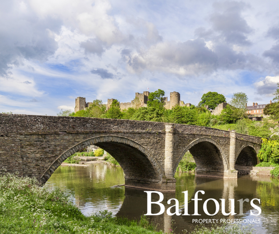 Meet Our Sponsor: Balfours