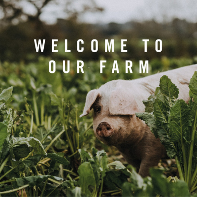 Meet Our Sponsor: Pipers Farm