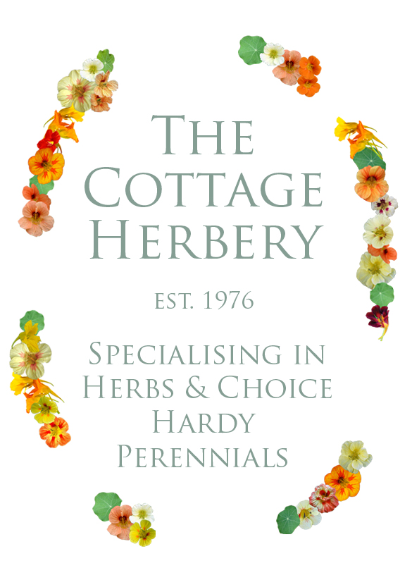 Virtual Festival - The Cottage Herbery