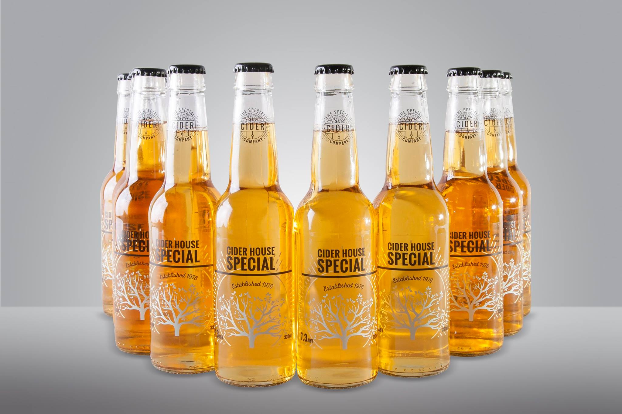 Discover The Special Cider Company at this year's Ludlow Spring Festival