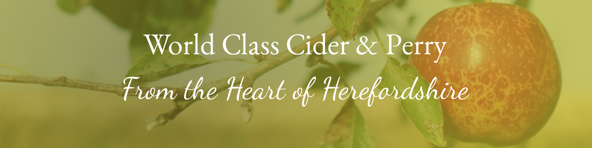 World Class Cider & Perry